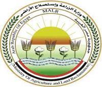 «الزراعة»: استمرار العمل بمحطات الإعداد والغربلة للتقاوي خلال الإجازات