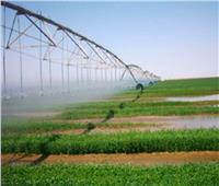 فيديو| الزراعة: التعدي على الأراضي الزراعية من أشكال الإرهاب
