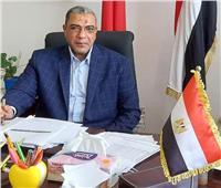تحرير 48 محضرا خلال حملات مكبرة على المخابز ببورسعيد