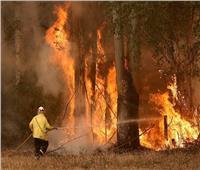 تجنب استخدام الملابس والأقدام في إطفاء الحرائق