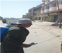 تحرير 41 محضرا للمخالفين في مدينة المحلة