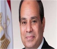السيسي: العامل المصري هو ثروة الوطن الحقيقية ومحرك التنمية