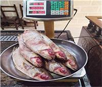 التموين: توافر جميع السلع واللحوم والأسماك بأسعار تنافسية