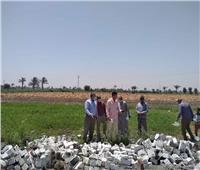 الزراعة: رصد مستمر لحالات التعدي على الأراضي وإزالات فورية في المهد.. صور
