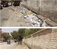 حملة نظافة وتجميل بأوسيم في الجيزة.. صور