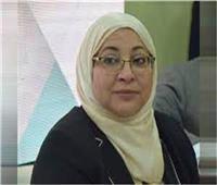 نائب محافظ القاهرة: رفع حالة الاستعداد والطوارئ بأحياء المنطقة الجنوبية