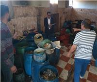 «الصحة»: إعدام 6 أطنان أغذية وأسماك فاسدة