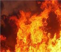 نفوق ماشية في حريق حوش بقنا