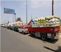 استئناف أعمال توريد القمح لشون وصوامع بني سويف