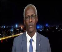 وزير الري السوداني: تبادل بيانات سد النهضة حق وليست منحة من إثيوبيا | فيديو