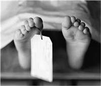 مصرع طفلة سقطت عليها عربة «كارو» أثناء لهوها بالدقهلية