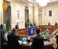 رئيس الوزراء: سنحصل على 5 مليون جرعة من لقاحات كورونا خلال شهر مايو