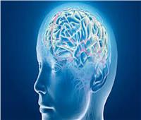 حسام موافي: خلايا المخ هي الوحيدة بالجسم التي لا تتجدد