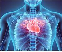 جمال شعبان: القلب يُغذي 100 ألف مليار خلية على مدار الساعة| فيديو