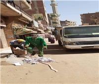 رفع 10 أطنان مخلفات من الشوارع الرئيسية بمدينة ومركز الباجور   صور