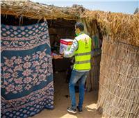 قوافل أبواب الخير تصل الإسماعيلية بـ 75 طن مواد غذائية لـ 4100 أسرة.. صور