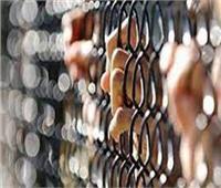 تجديد حبس المتهمين بقتل فرد أمن وسرقة 48 ألف جنيه من خزينة مصنع