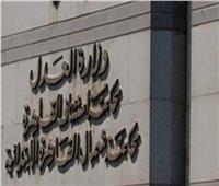 انتهاء التحقيقات بشأن 15 منظمة وجمعية بـ«قضية التمويل الأجنبي»