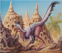 الديناصور «شوفويا».. أقدم صياد ليلي بـ65 مليون سنة | صور