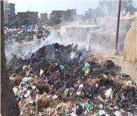 أكوام القمامة والتلوث يحاصران أهالي «الشوكة» في البحيرة | فيديو