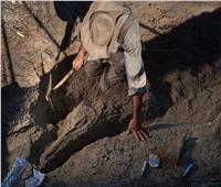 العثور على بقايا 9 أفراد من إنسان «نياندرتال» يعود أحدها إلى 100 ألف عام
