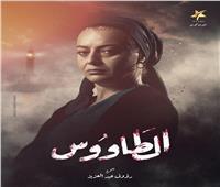 بعد الانتهاء من تصويره.. هبة عبد الغني توجه رسالة لفريق عمل «الطاووس»