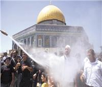 استنكار عالمي لخطط إسرائيل لإجلاء عائلات فلسطينية من «الشيخ جراح»