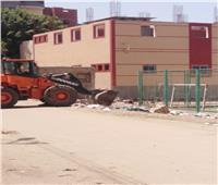 رئيس المحلة يوجه بحملة نظافة مكبرة بقرية «محلة أبو على»