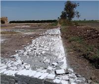 إزالة 8 حالات تعدي على الأرض الزراعية بنطاق 3 مراكز بالبحيرة