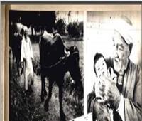قصة حقيقية.. 100 فلاح وفلاحة في قرية بشتيل يحملون الجنسية الروسية