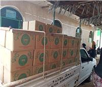 «جامعة طنطا» توزع 300 كرتونة مواد غذائية بزفتي ضمن «حياة كريمة»