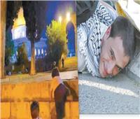تضامن مصرى وعربى مع فلسطين