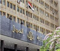 العدل تلغي الضبطية القضائية لرئيس مجموعة العمل الميداني بمرافق بورسعيد
