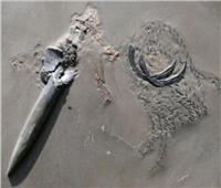 حفرية مذهلة لـ«حبار» تعود لـ 180 مليون سنة| صور