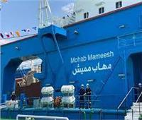 مستشار النقل البحري: لدينا 7 كراكات بدخول «مهاب مميش» للخدمة