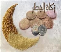 لأهميتها.. النبي استلف من عمه مالا لدفع زكاة الفطر