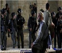 نجوم الفن يعلنون تضامنهم مع الشعب الفلسطيني