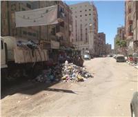 رفع تجمعات القمامة وإزالة الإشغالات بحي ثان الإسماعيلية