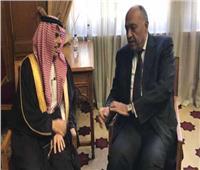 شكرى يبحث هاتفيا مع نظيره السعودي التطورات على الساحة الفلسطينية