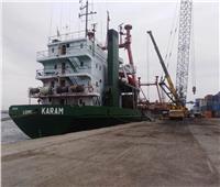 25 سفينة إجمالى الحركة الملاحية بموانئ بورسعيد