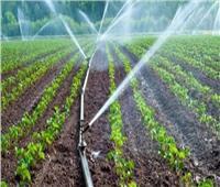 ماذا قدمت وزارة الزراعة للمزراعين لتنفيذ منظومة الري الحديث؟