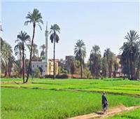 «الزراعة»:خطة لتطوير الحياة في الريف وتوفير حياة كريمة للفلاح