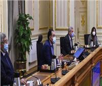لجنة كورونا تبحث تقييم الوضع الوبائي في مصر خلال أيام