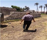 إزالة ١٣ حالة تعدي على الأراضي الزراعية خلالعيد الفطر
