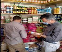 ضبط أسماك مملحة فاسدة وتحرير 49 مخالفة تموينية خلال حملات رقابية بالمنيا