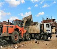 محافظ الغربية يوجه المحليات بشن حملات نظافة ورفع الإشغالات