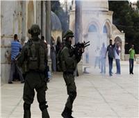 الجزائر: اعتداءات الاحتلال الإسرائيلي تنتهك القوانين والأعراف الدولية
