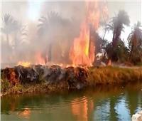 «وكيل التضامن بالأقصر» يكشف سبب حريق قرية العضايمة