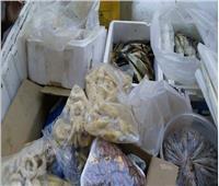 ضبط 37.5 دقيق مدعم وطن و780 كيلو أسماك غير صالحة