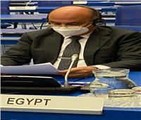 وزير العدل: مصر تنضم لبيان المجموعتين العربية والأفريقية دعماً لحقوق الفلسطينيين